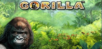 Gorilla Slot free spins