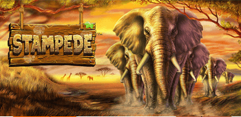 Stampede Slot Review